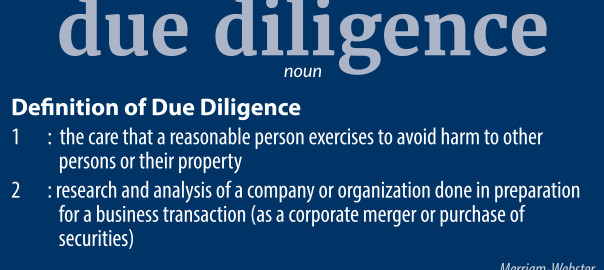 Doing Your Due Diligence | Blue Vault