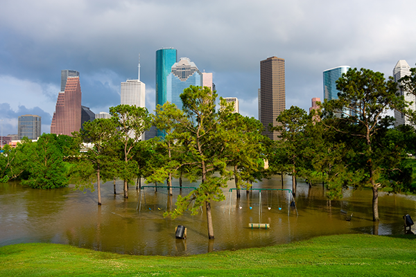 Houston Flood adobe
